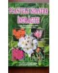 Plantele noastre indragite