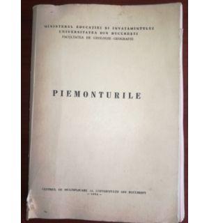 Piemonturile- Maria Patroescu