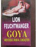 Goya- anevoiosul drum al cunoasterii