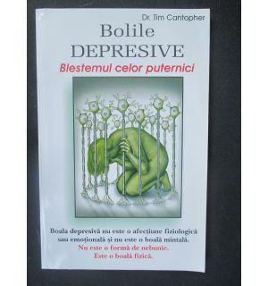 Bolile depresive